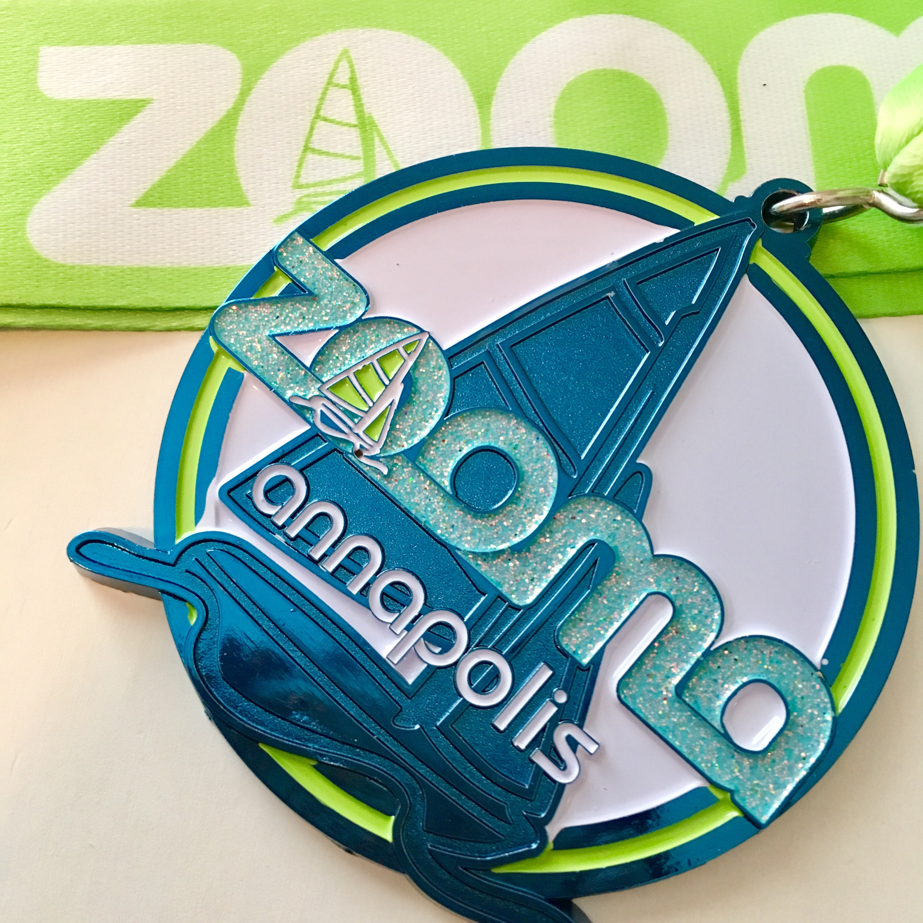 2017 ZOOMA race